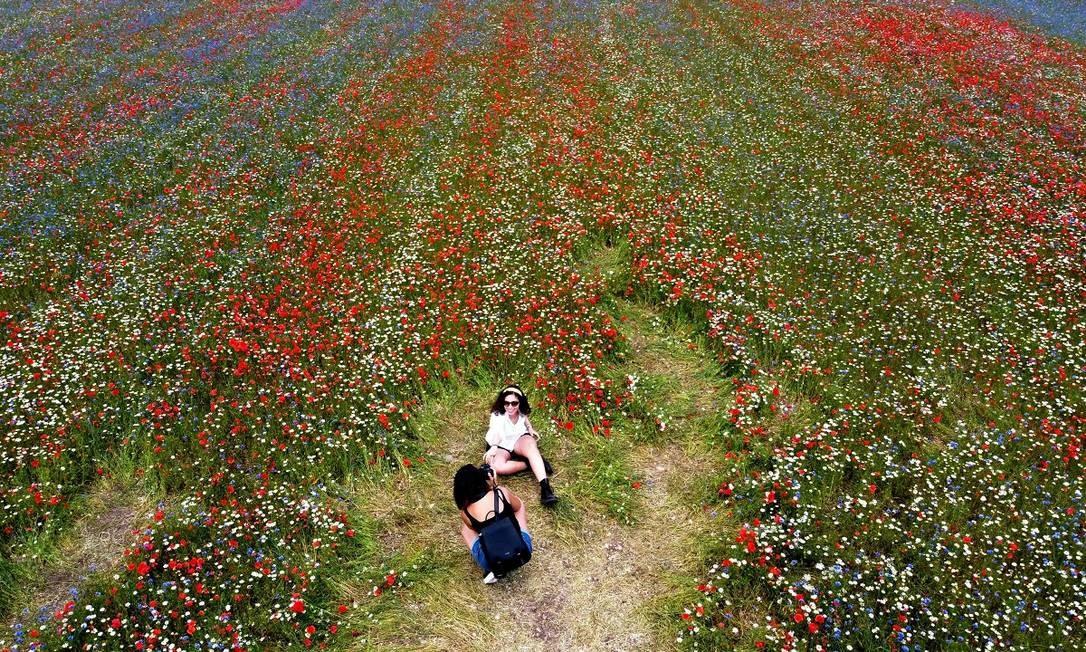 Turistas posam para fotos nos campos floridos de Castelluccio di Norcia, na Úmbria, região central da Itália Foto: VINCENZO PINTO / AFP