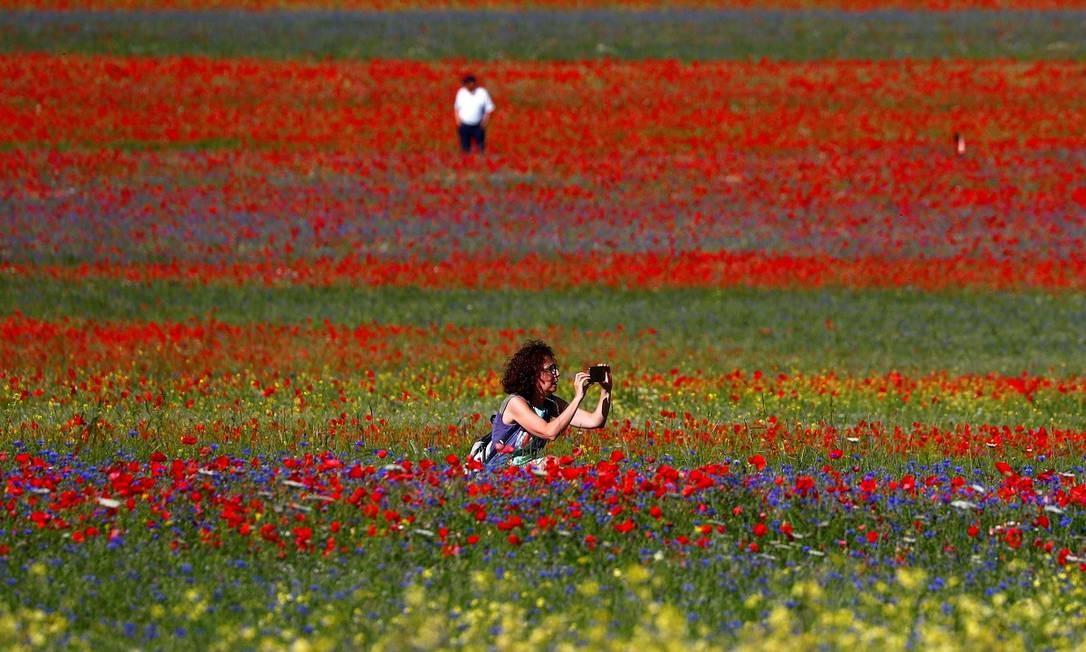 Turista fotografa os campos floridos de Castelluccio di Norcia, na Úmbria, região central da Itália Foto: GUGLIELMO MANGIAPANE / REUTERS