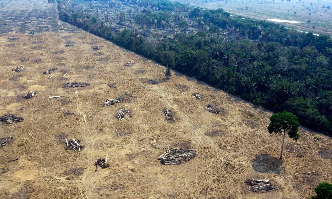 Foto feita em agosto de 2019 mostra desmatamento na Amazônia, em Rondonia Foto: CARLOS FABAL / AFP