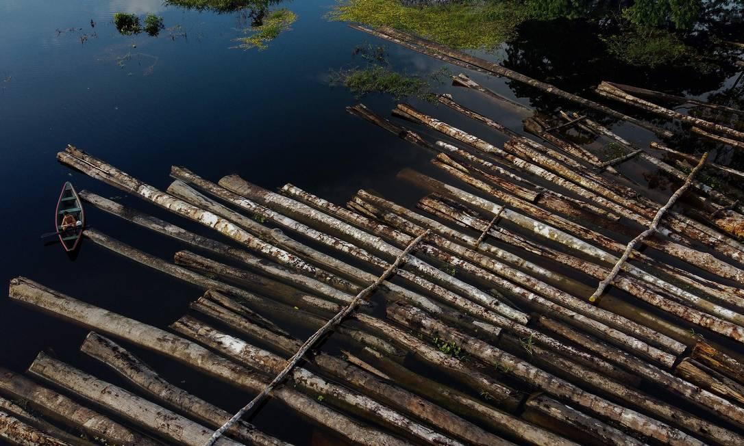 Troncos de madeira, cortados ilegalmente, apreendidos em Manacapuru, no Amazonas Foto: Ricardo Oliveira/AFP/16-06-2020