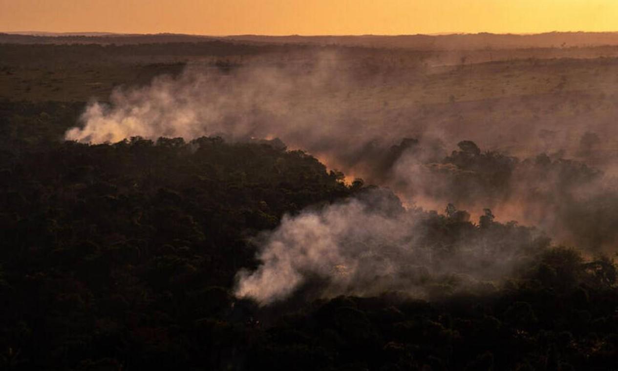 Foco de calor direto em floresta, próximo a área recém desmatada, com alerta Deter, em Alta Floresta (MT) Foto: Christian Braga/Greenpeace/Divulgação / Christian Braga/Greenpeace/Divulgação