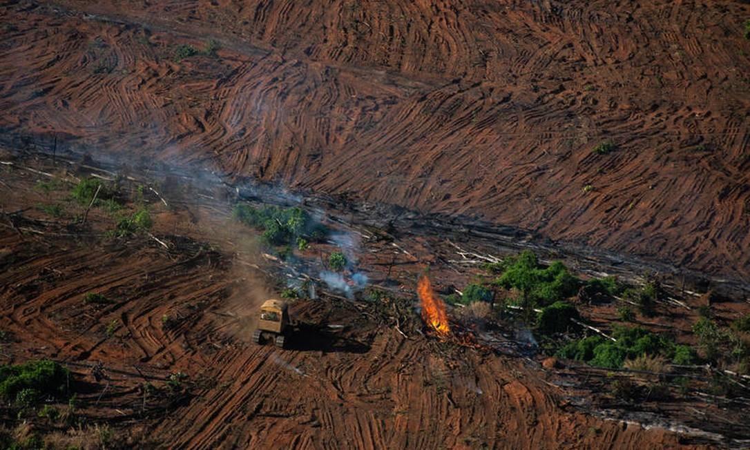 Restos de floresta sendo queimados em área com registro de desmatamento pelo último Prodes, em Juara (MT) Foto: Christian Braga / © Christian Braga / Greenpeace