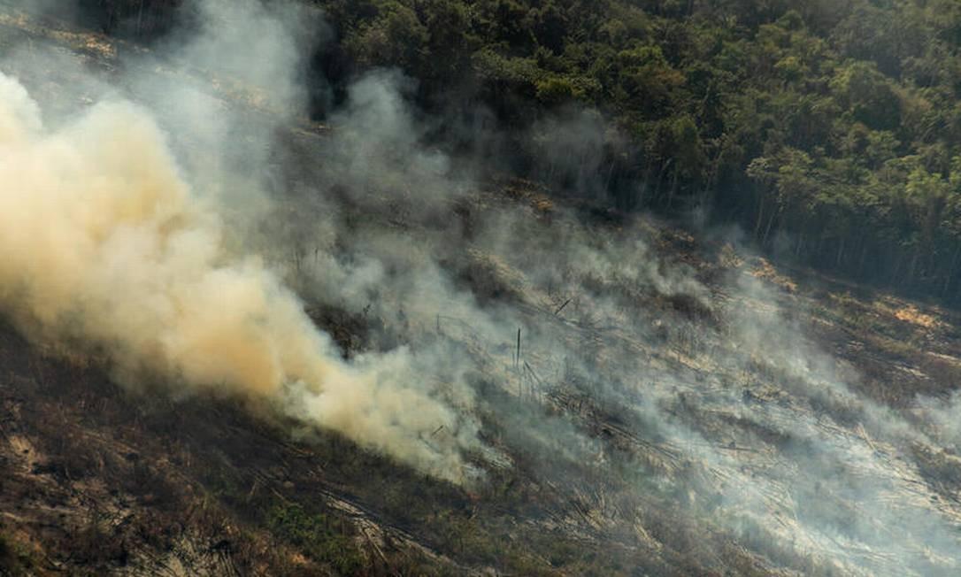 Polígonos de desmatamento recente com alertas de Deter e resquícios de focos de calor do dia anterior, em Nova Canaã do Norte (MT) Foto: Christian Braga / © Christian Braga / Greenpeace