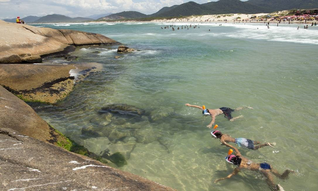 Banhistas da Praia da Joaquina, em Florianópolis, Santa Catarina Foto: Caio Vilela / Ministério do Turismo / Divulgação