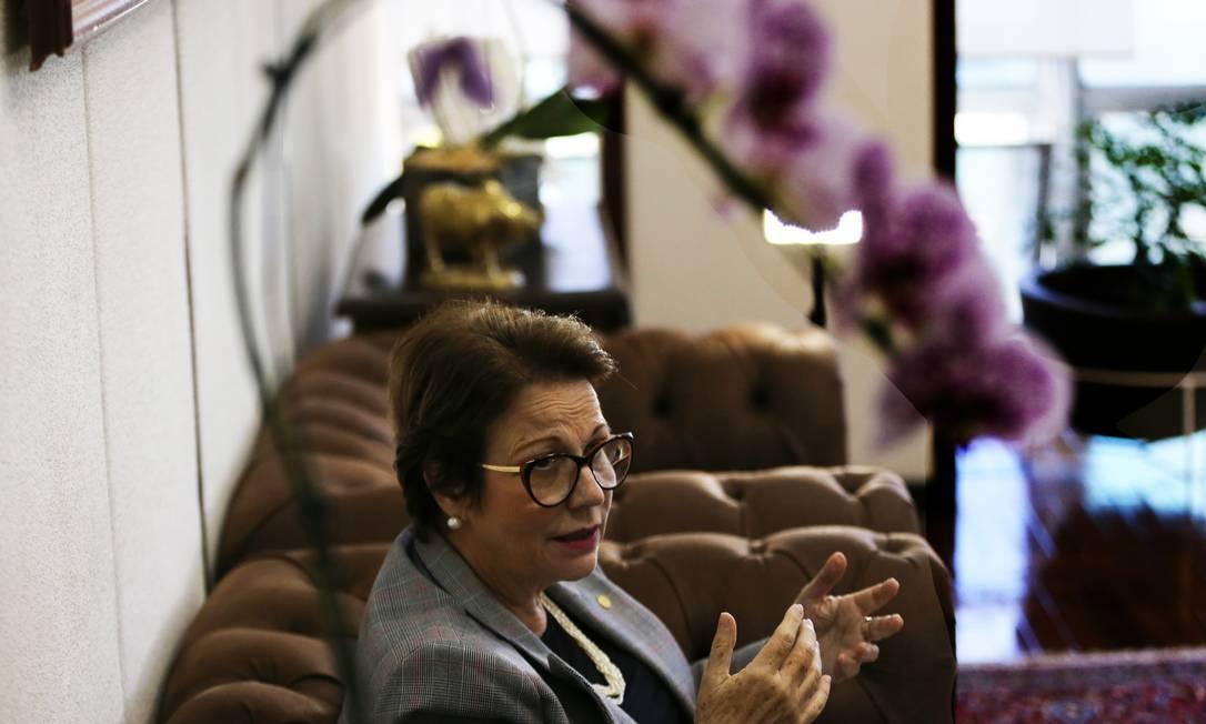 Tereza Cristina defende a atuação do titular da pasta do Meio Ambiente, Ricardo Salles Foto: Jorge William / Agência O Globo