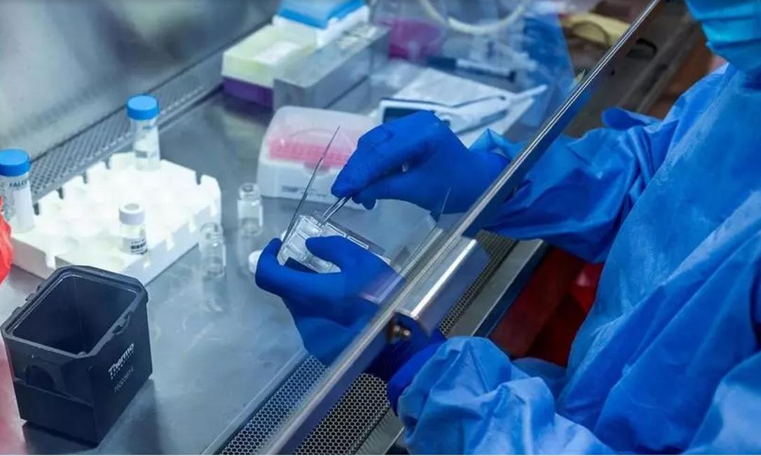Reino Unido garante 60 milhões de doses de vacina em acordo com farmacêuticas Sanofi e GlaxoSmithKline Foto: UPMC/REUTERS