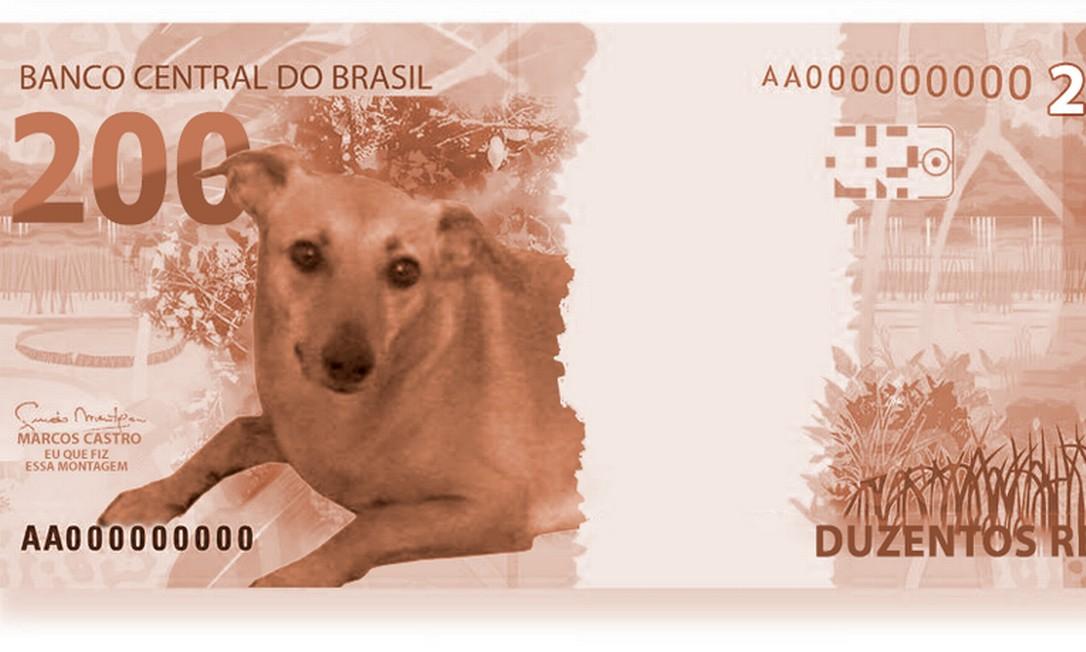 O vira-lata caramelo também aparece como candidato a substituto do lobo-guará na nova cédula de 200 reais Foto: