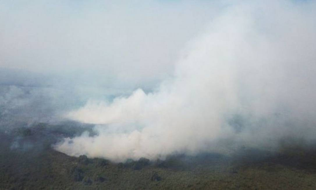 Com período de extrema seca, Pantanal viu o fogo tomar conta de parte de sua área nos últimos meses Foto: POLÍCIA MILITAR AMBIENTAL/MS