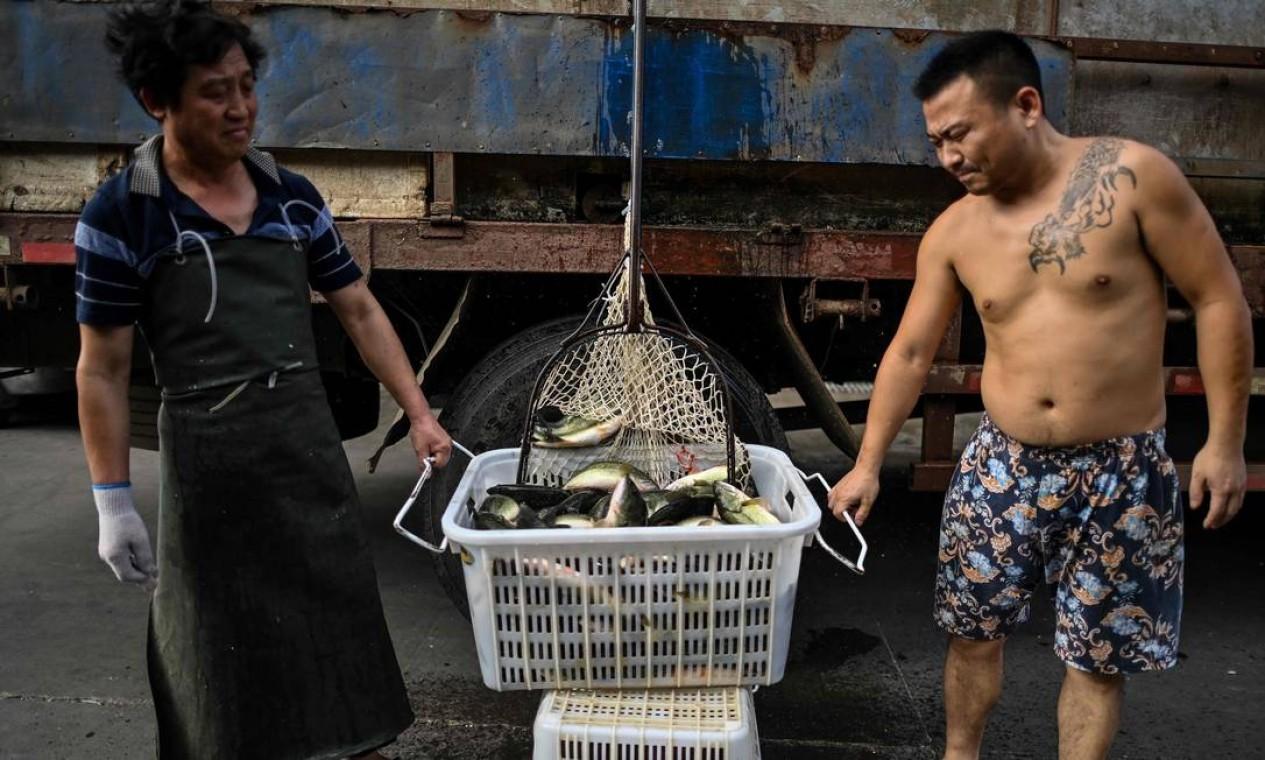 Trabalhadores de um mercado de frutos do mar em Wuhan. Entre as primeiras pessoas contaminadas na cidade, muitas trabalhavam no mercado atacadista de frutos do mar de Huanan, que foi fechado pelas autoridades no início de janeiro Foto: HECTOR RETAMAL / AFP - 06/08/2020
