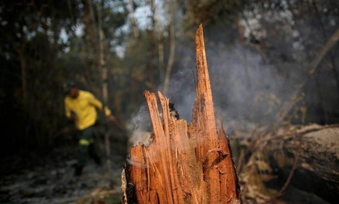 Membro da brigada de incêndio do Instituto Brasileiro do Meio Ambiente e dos Recursos Naturais Renováveis (Ibama) tenta controlar um incêndio em uma área da floresta amazônica em Apuí, no Amazonas Foto: UESLEI MARCELINO / REUTERS