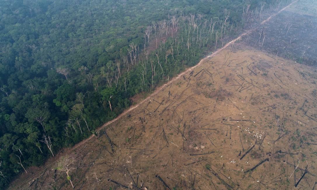 Imagem aérea mostra fronteira entre a selva amazônica a área degradada por queimadas a mando de madeireiros e fazendeiros, em Apuí, no Amazonas Foto: UESLEI MARCELINO / REUTERS