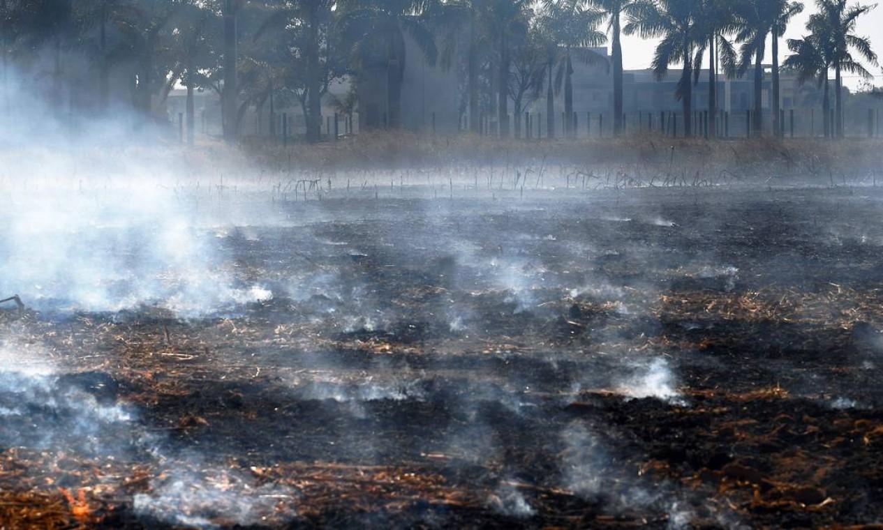 Fumaça sobe de um incêndio ilegal na reserva da floresta amazônica, ao norte de Sinop, no Mato Grosso Foto: CARL DE SOUZA / AFP