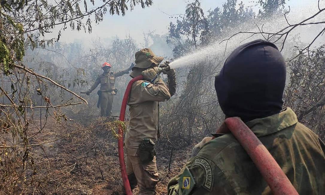 Operação Pantanal segue com ação de militares combatendo incêndio no Mato Grosso Foto: CBMS