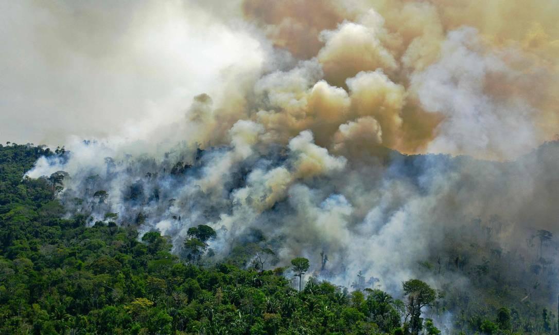 Imagem aérea de uma área de queimadas da reserva da floresta amazônica, ao sul de Novo Progresso, no estado do Pará, no domingo (16) Foto: CARL DE SOUZA / AFP