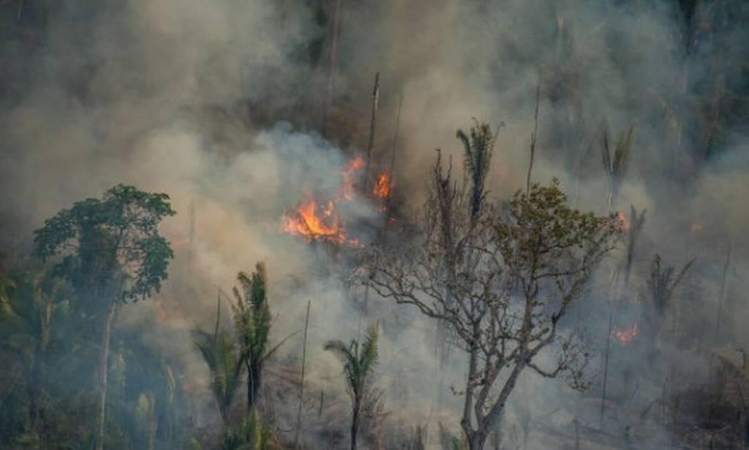 Queimada na Reserva Extrativista Jaci-Paraná, em Porto Velho Foto: Christian Braga/Greenpeace