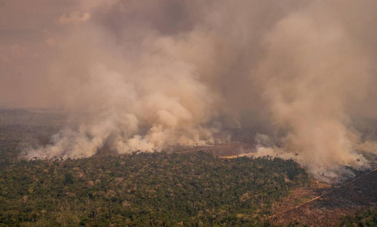 Queimada na Floresta Nacional do Bom Futuro, em Porto Velho, Rondônia Foto: Christian Braga / Greenpeace / Agência O Globo