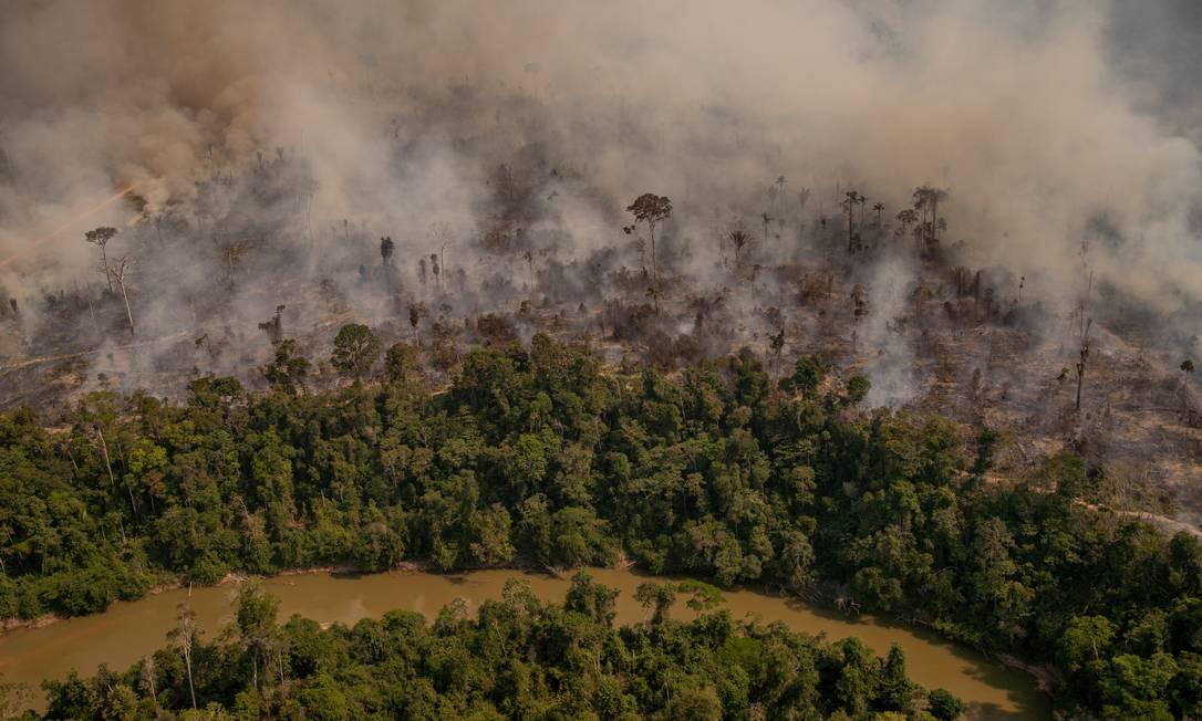 O desmatamento na Amazônia avança e impactos negativos na economia brasileira preocupam Foto: Christian Braga / Agência O Globo