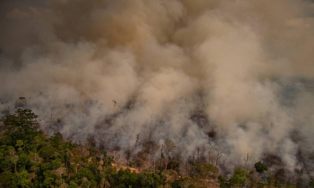Queimada no município de Porto Velho, Rondônia Foto: Christian Braga / Greenpeace / Agência O Globo