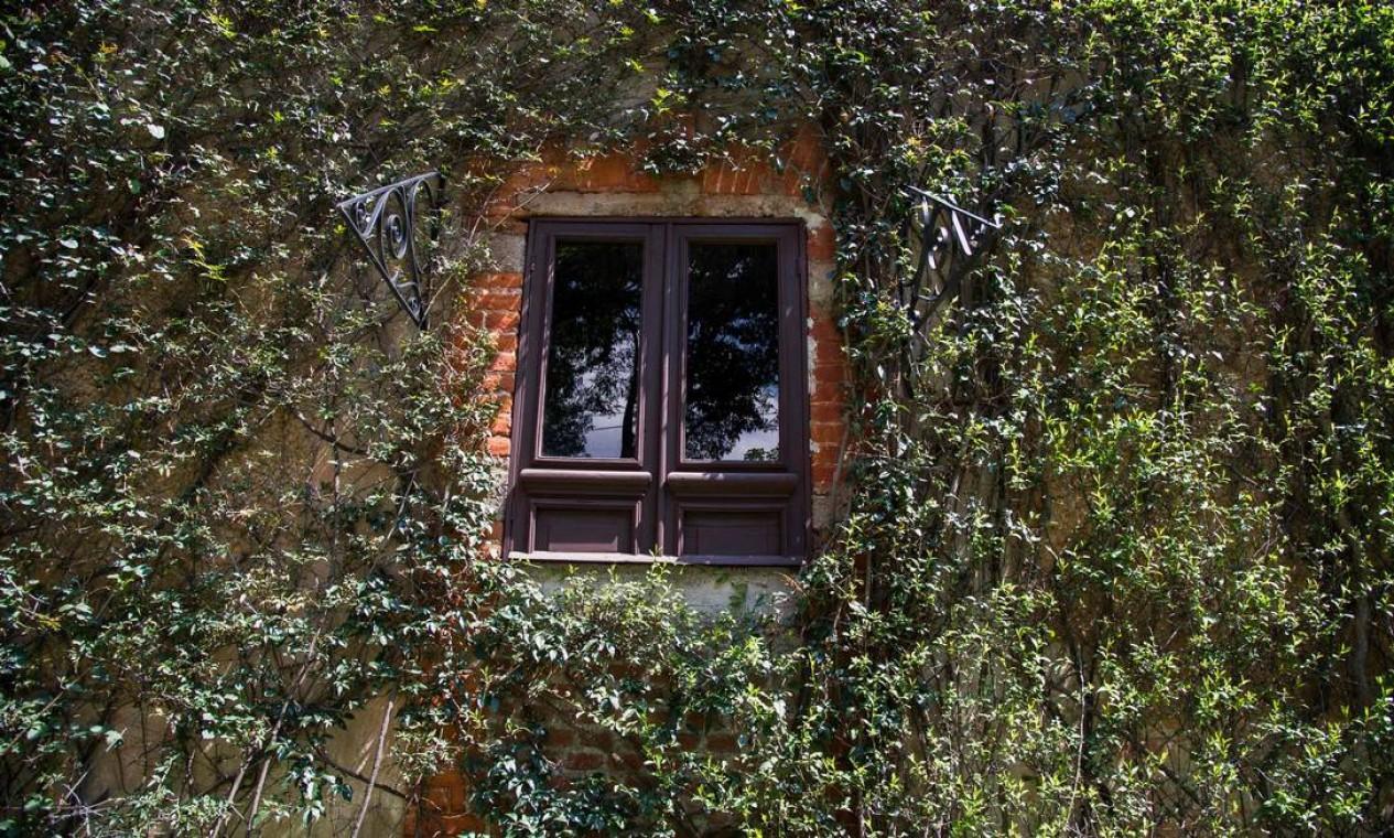 Vista de uma das janelas do quartona casa onde Trotsky passou seus últimos meses de vida, no México. Trotsky escapou de uma tentativa de assassinato quando um grupo invadiu sua casa na Cidade do México e metralhou o quarto em que dormia com a esposa Foto: CLAUDIO CRUZ / AFP
