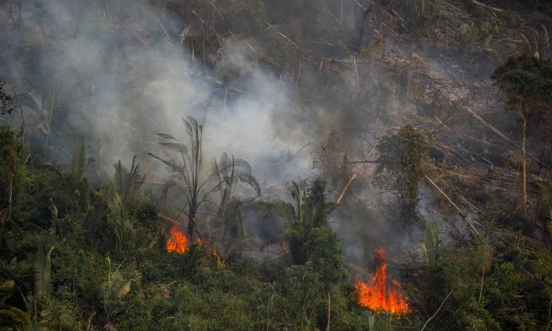 Fogo na reserva extrativista Jaci-Paraná Extractive Reserve, em Porto Velho (RO) Foto: Christian Braga/Greenpeace