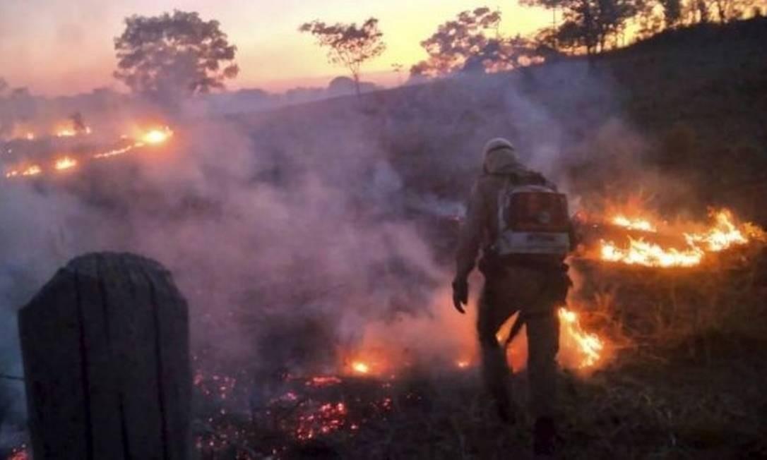 Incêndio no Mato Grosso: em julho, Pantanal teve 1.669 focos de calor, maior índice desde 1998 Foto: Corpo de Bombeiros de MT