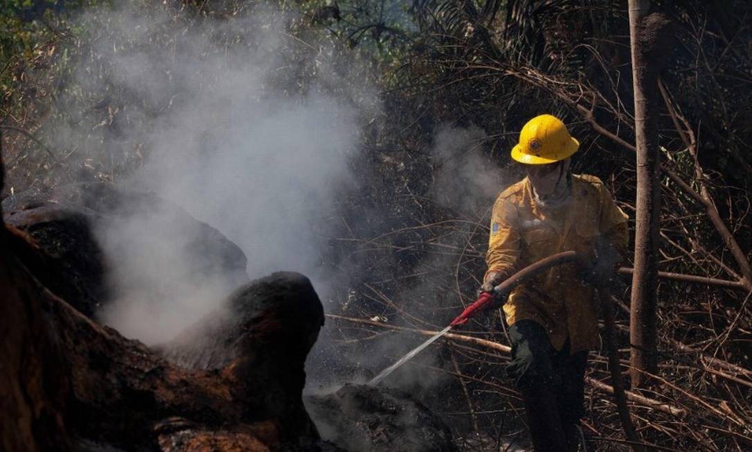 Brigadista do Prevfogo atua contra queimada em reserva florestal em Novo Progresso (PA) Foto: João Laet/AFP