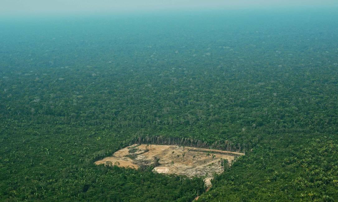 Desmatamento na Amazônia Ocidental: biomas perderam até 21% de sua vegetação nativa entre 1985 e 2019, segundo mapeamento Foto: CARL DE SOUZA/AFP