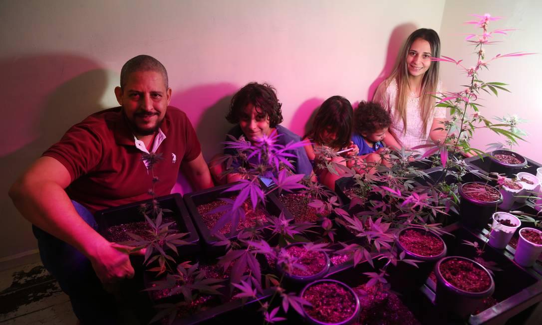 Bruna mostra seu plantio legal de maconha ao lado do marido Daniel e dos filhos, que têm autismo severo Foto: Pedro Teixeira / Agência O Globo