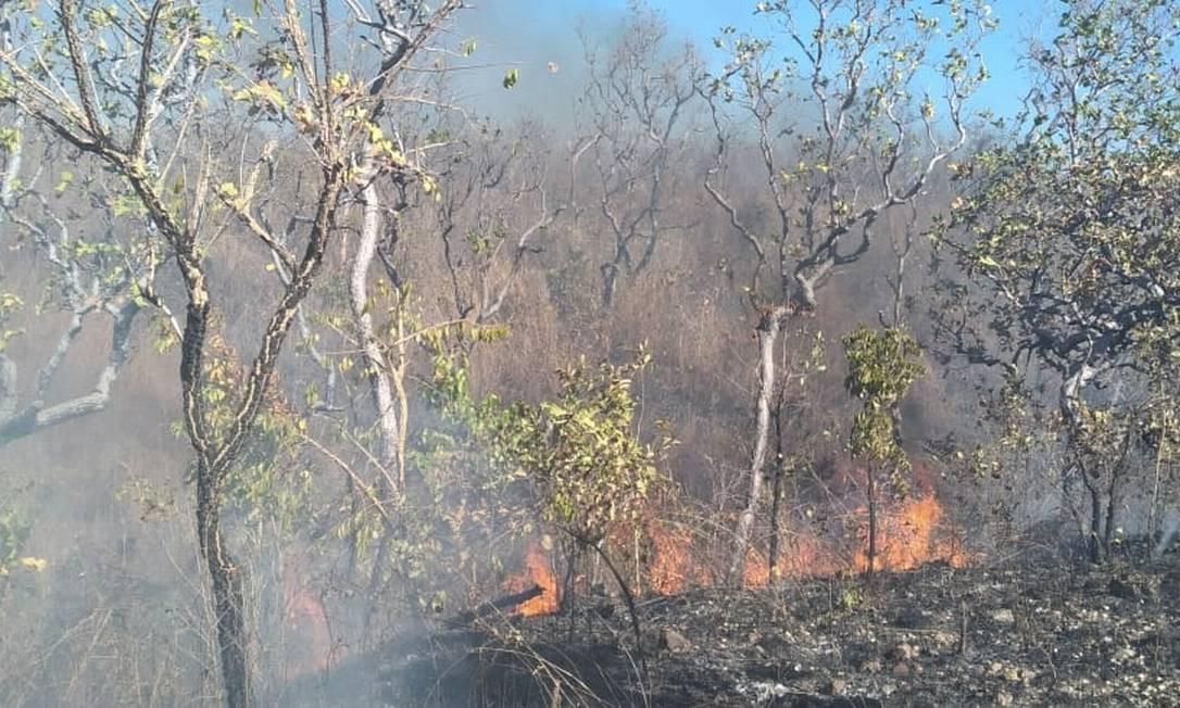 Combate a incêndio no Pantanal no Município de Poconé, em Mato Grosso Foto: Agência O Globo