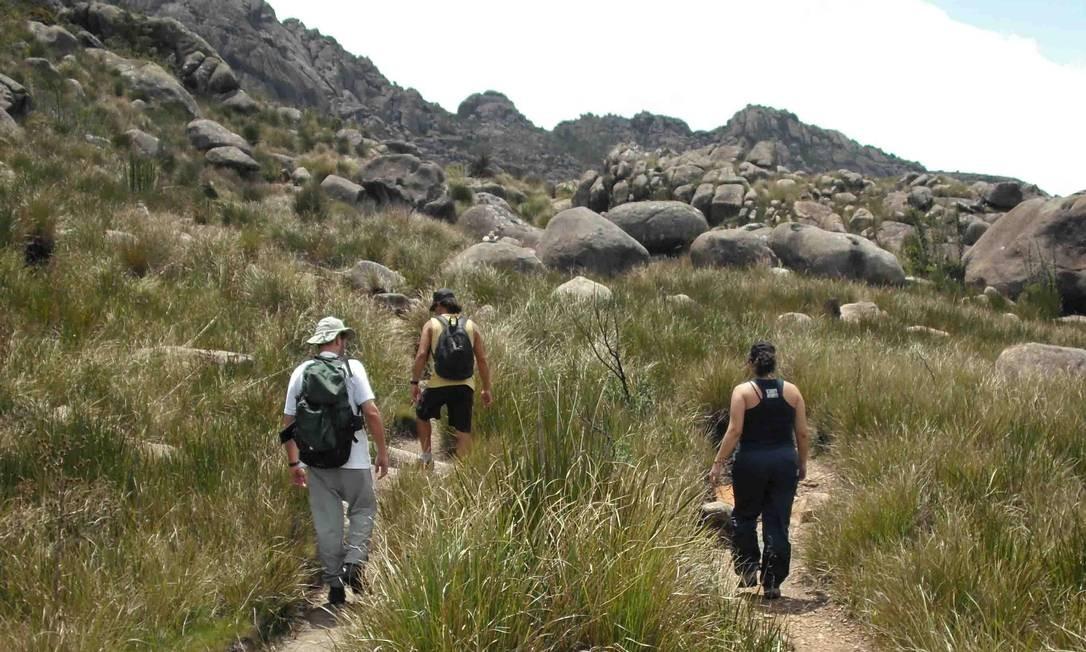 Visitantes caminham pela Parte Alta do Parque Nacional do Itatiaia Foto: Gute Passeios / Divulgação