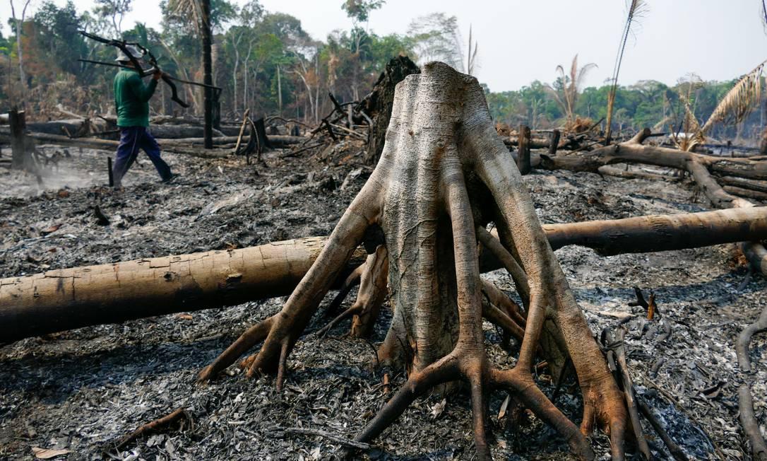 Desmatamento e queimadas em Lábrea, na Amazônia. Foto: Sandro Pereira / Agência O Globo