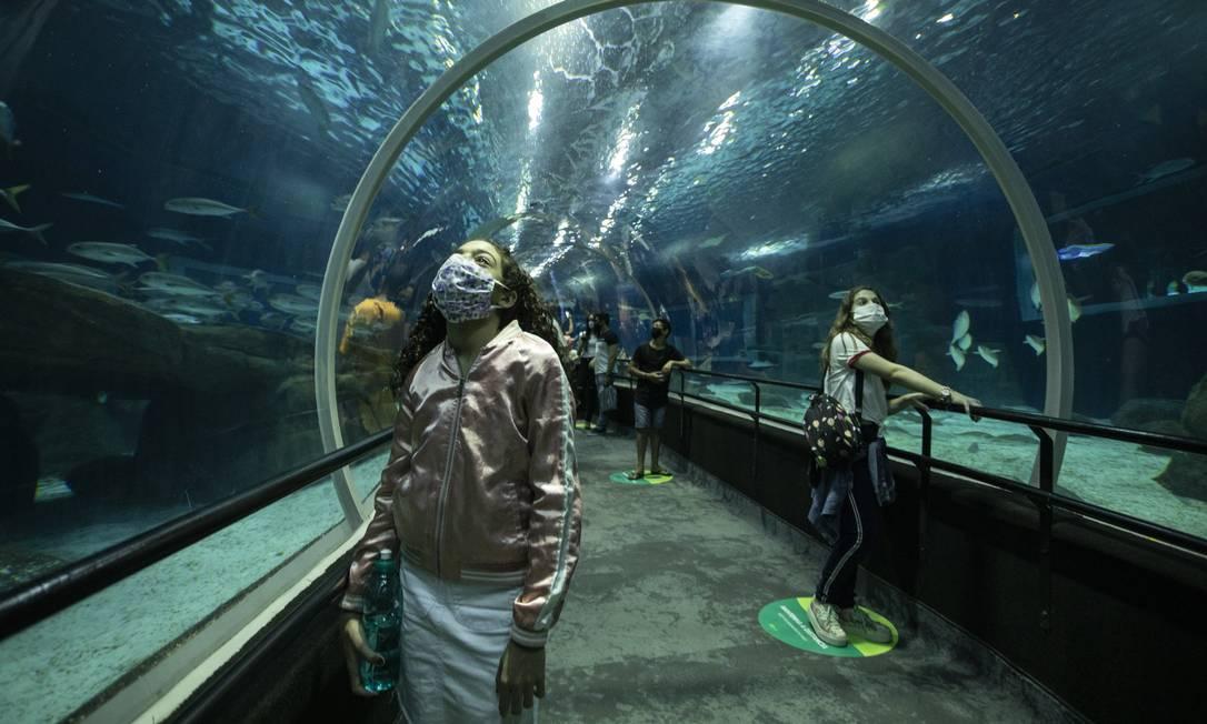 No passeio no AquaRio, visitantes precisam usar máscaras e respeitar o distanciamento social. Foto: Ana Branco / Agência O Globo