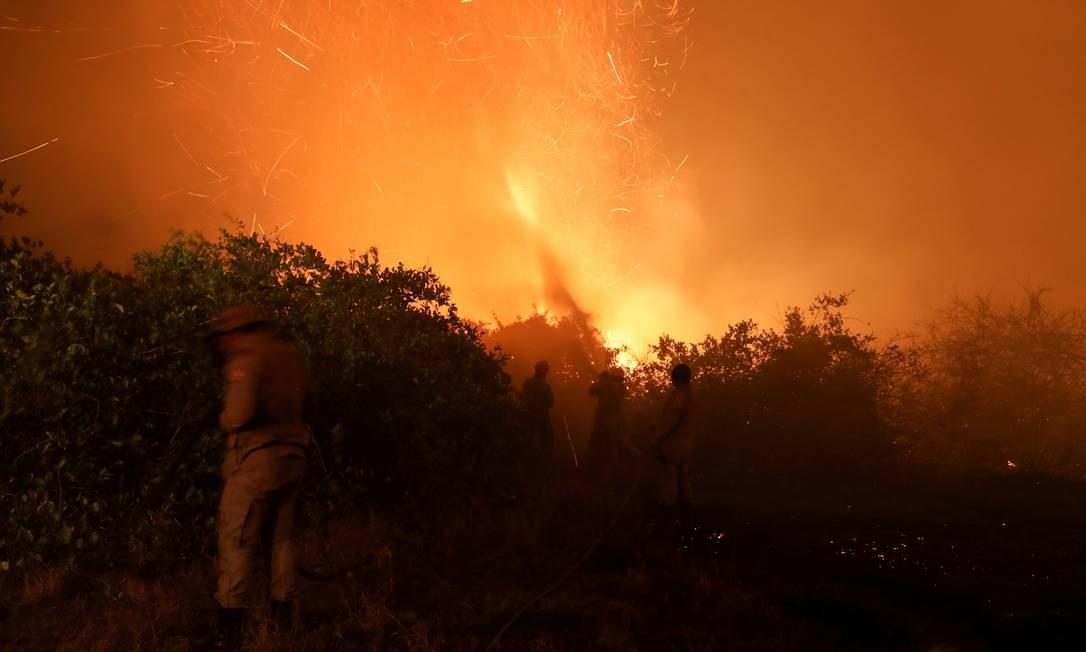 Bombeiros e brigadistas combatem incêndios no pantanal matogrossense Foto: Amanda Perobelli / Reuters