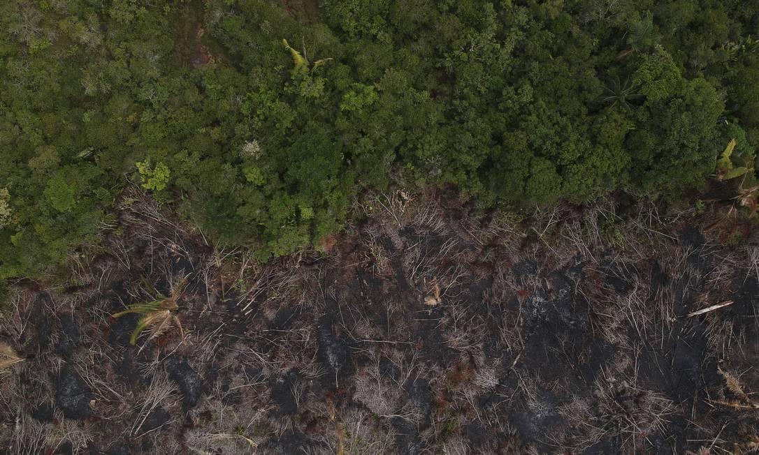 Foto de 2019 mostra entorno da estrada BR-319, que liga Porto Velho a Manaus, grande ponto de queimadas Foto: Gabriel Monteiro / Agência O Globo
