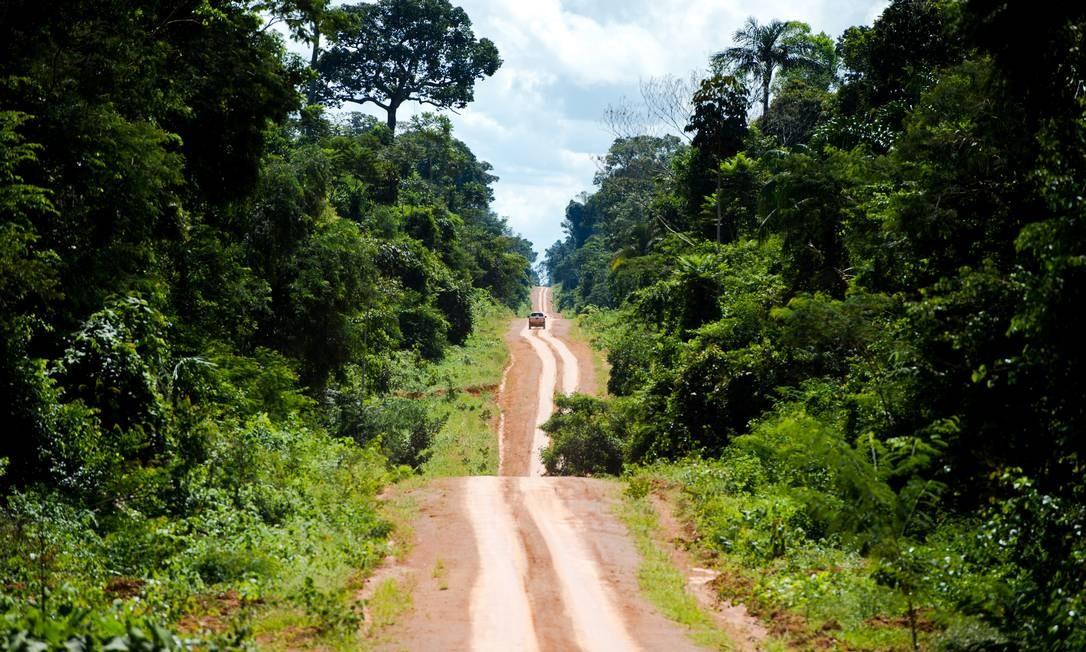 Área da Amazônia Legal, no Mato Grosso Foto: Marcelo Camargo / Agência Brasil