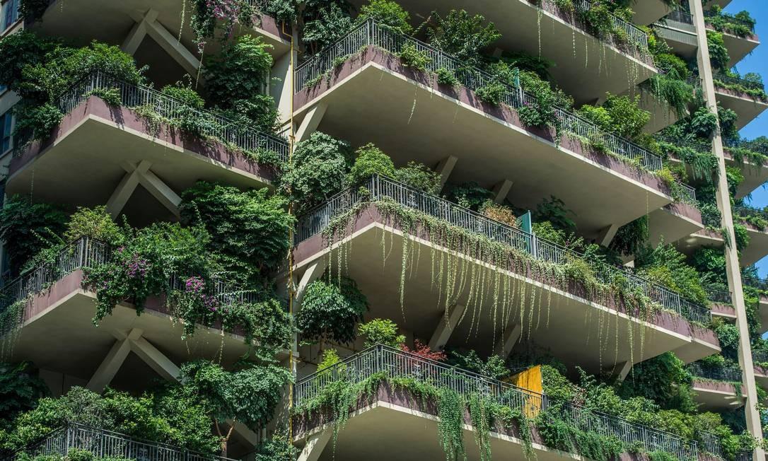 Vegetação crescendo desontroladamente tem forçado moradores a deixarem suas casas Foto: STR / AFP