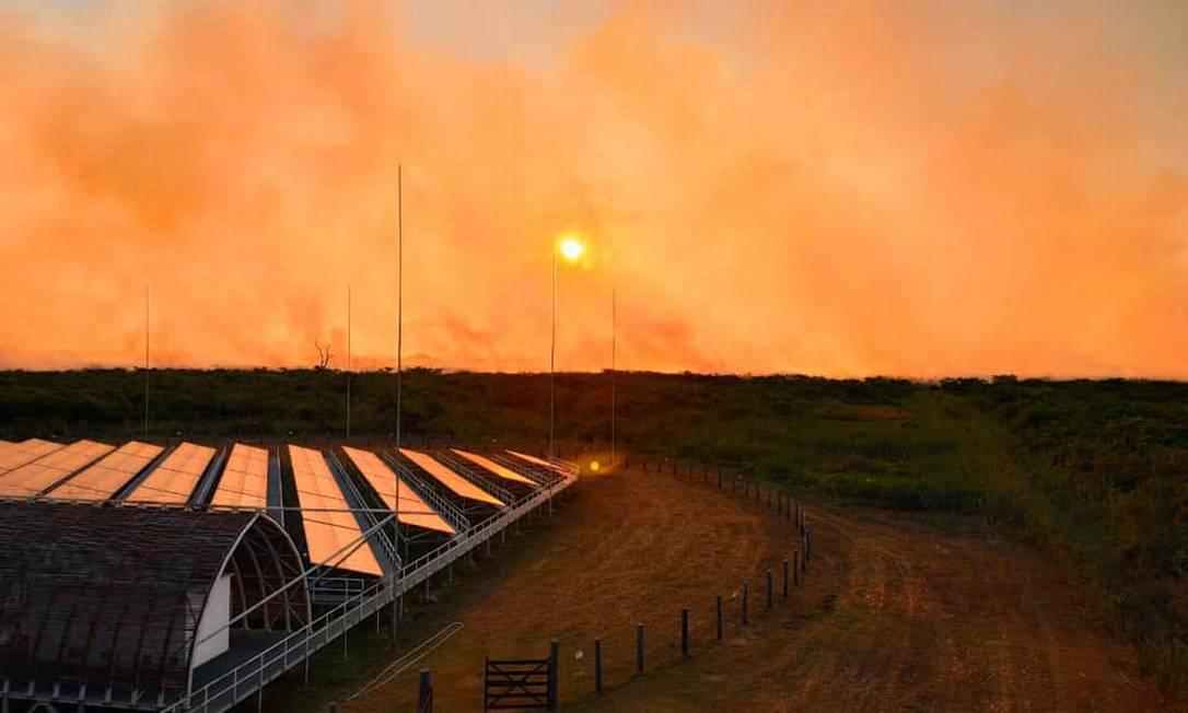 Operação Pantanal segue com ações diárias de combate a incêndios Foto: Agência O Globo