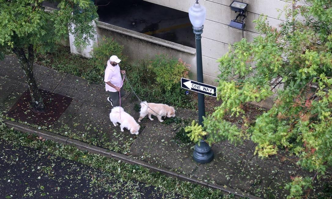 Um homem passeia com seus cachorros durante o furacão Sally em Mobile, Alabama Foto: JONATHAN BACHMAN / REUTERS