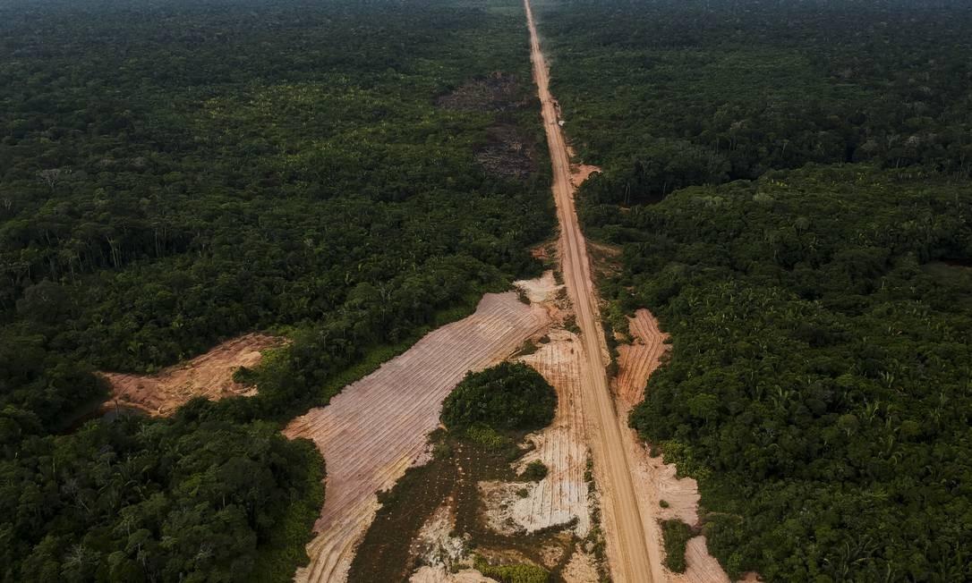 Amazônia: menção ao presidente Bolsonaro foi retirada de texto final votado pelo Parlamento Europeu Foto: Gabriel Monteiro / Agência O Globo