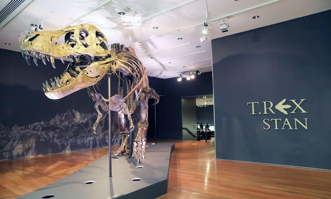 Preço de venda estimado do esqueleto é de seis a oito milhões de dólares. Recorde pertence a Sue, outro T-Rex vendido em outubro de 1997 na Sotheby's, por 8,4 milhões de dólares, ao Museu de História Natural de Chicago Foto: SPENCER PLATT / AFP