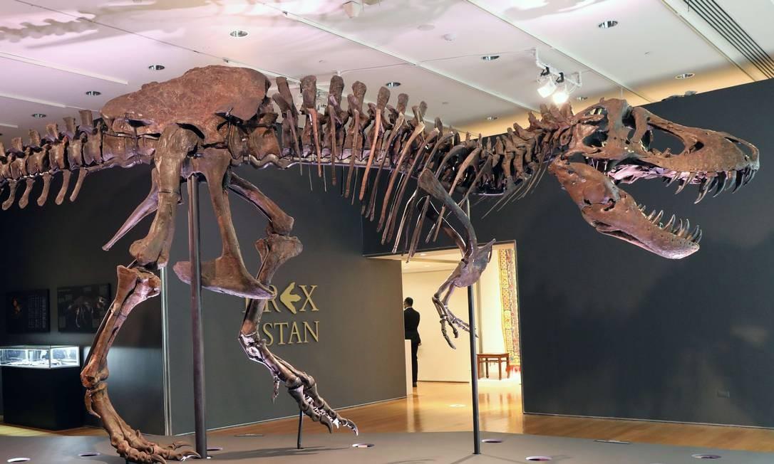 Esqueleto do T-Rex é exibido em uma galeria na casa de leilões Christies, na cidade de Nova York. Stan é um raro representante da espécie rainha dos dinossauros, que pesava de sete a oito toneladas quando viveu há 67 milhões de anos Foto: SPENCER PLATT / AFP