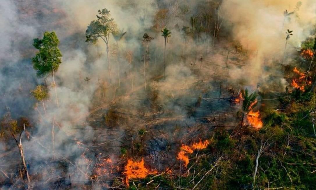 Incêndios florestais na Amazônia brasileira teriam voltado a níveis alarmantes de dez anos atrás Foto: Getty Images