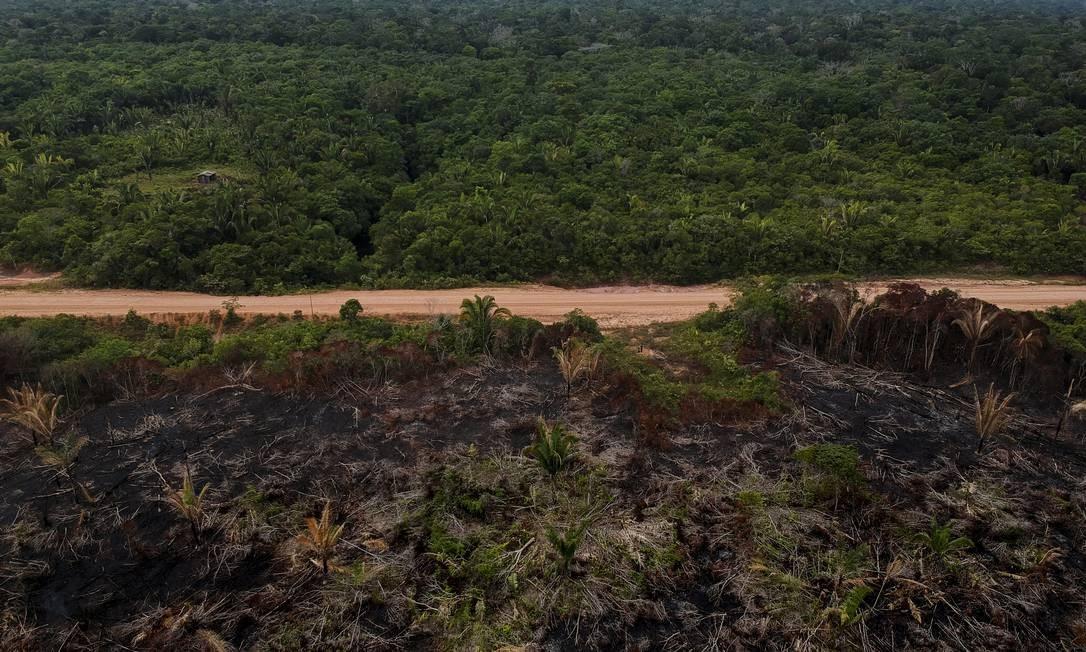 Amazônia: Estrada BR-319, que liga Porto Velho a Manaus, grande ponto de queimadas Foto: Gabriel Monteiro / Agência O Globo