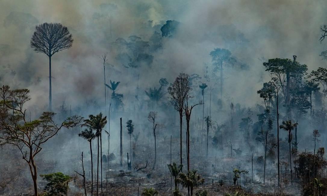 Queimada em Novo Progresso (PA), na Amazônia Foto: Victor Moriyama/AFP/Greenpeace/23.08.2019