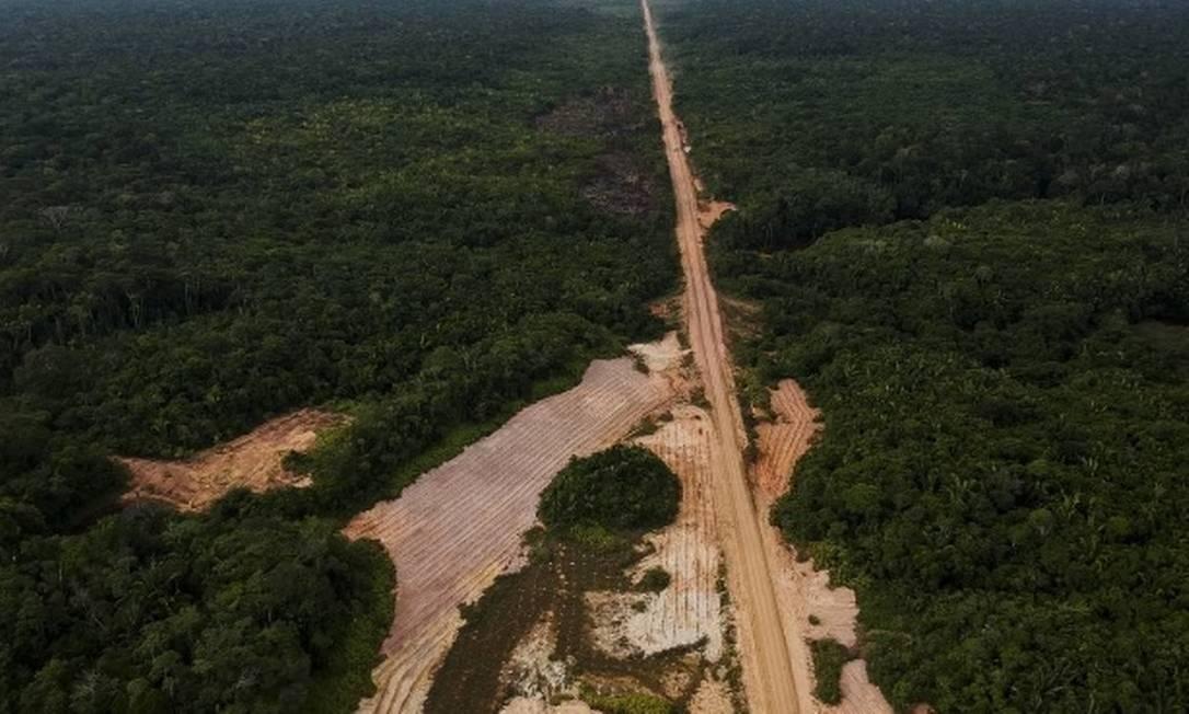 Desmatamento na beira da estrada BR-319, que liga Porto Velho a Manaus Foto: Gabriel Monteiro / Agência O Globo