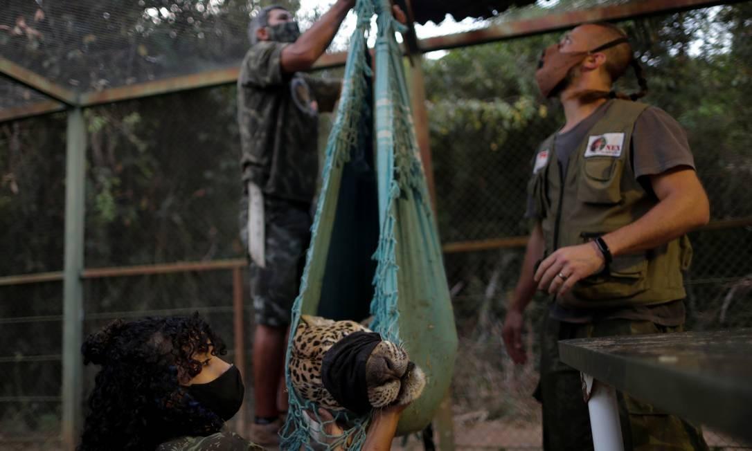 Ousado é pesado por trabalhadores do Instituto Nex Foto: UESLEI MARCELINO / REUTERS