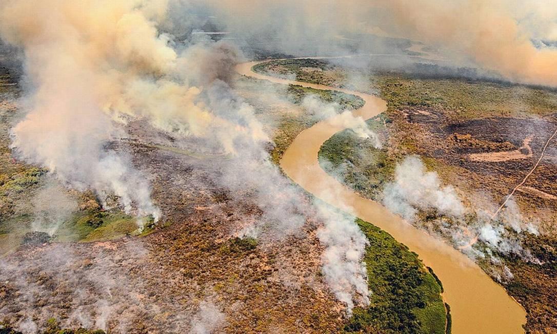 Queimadas no Pantanal: 20% do bioma já foi destruído Foto: Caio Guatelli