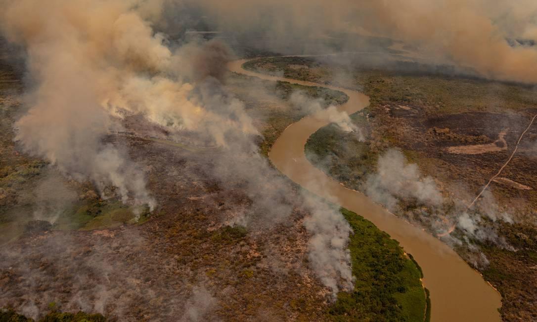 Fogo consome áreas do Pantanal em Poconé (MT) Foto: Caio Guatelli / Caio Guatelli
