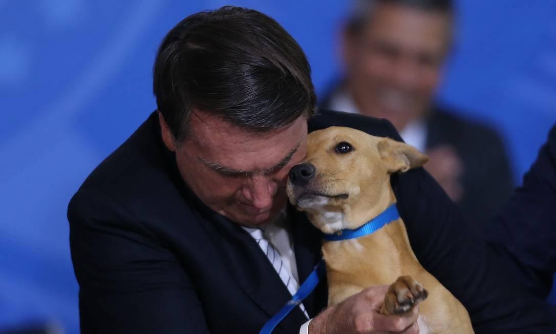 O presidente Jair Bolsonaro com o seu cachorro Nestor em cerimônia no Palácio do Planalto Foto: Jorge William / Agência O Globo