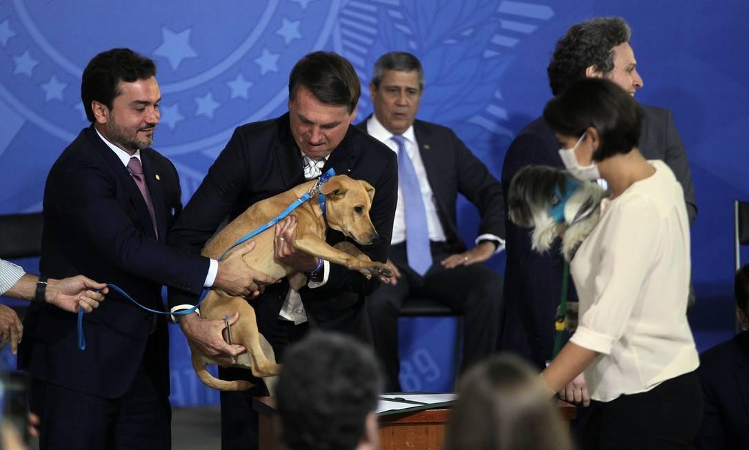 """Projeto de lei contou com """"lobby"""" da primeira-dama, Michelle Bolsonaro, para que fosse sancionado Foto: Jorge William / Agência O Globo"""